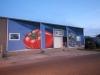 3d-anamorphic-streetart-mural-tampa