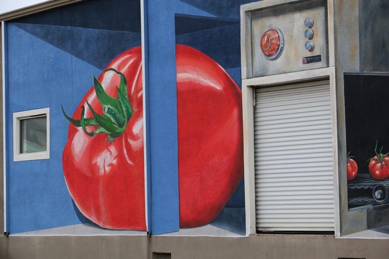 tomatoes-tampa-mural-phosphate