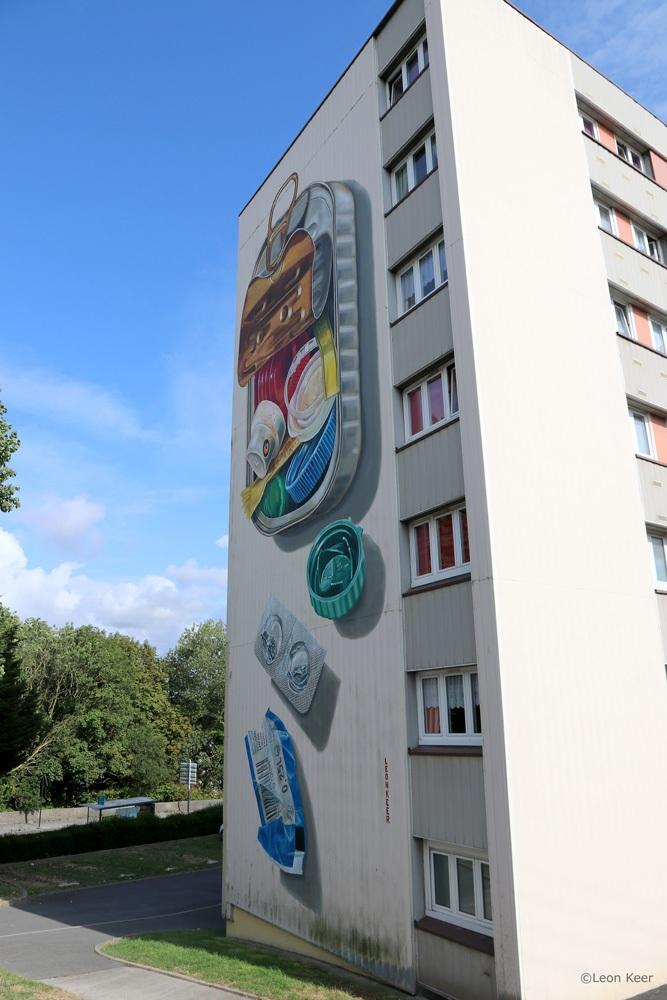 anamorphic-mural-leonkeer-3d-trompeloeil-sardines-plastic