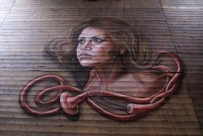Street painting Höftedagen 2011 by Leon Keer