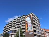 anamorphic-art-3d-mural-leonkeer-artstreethbg-muurschildering