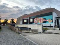 fragile-mural-leonkeer-3dstreetart-wrapped-violin-package