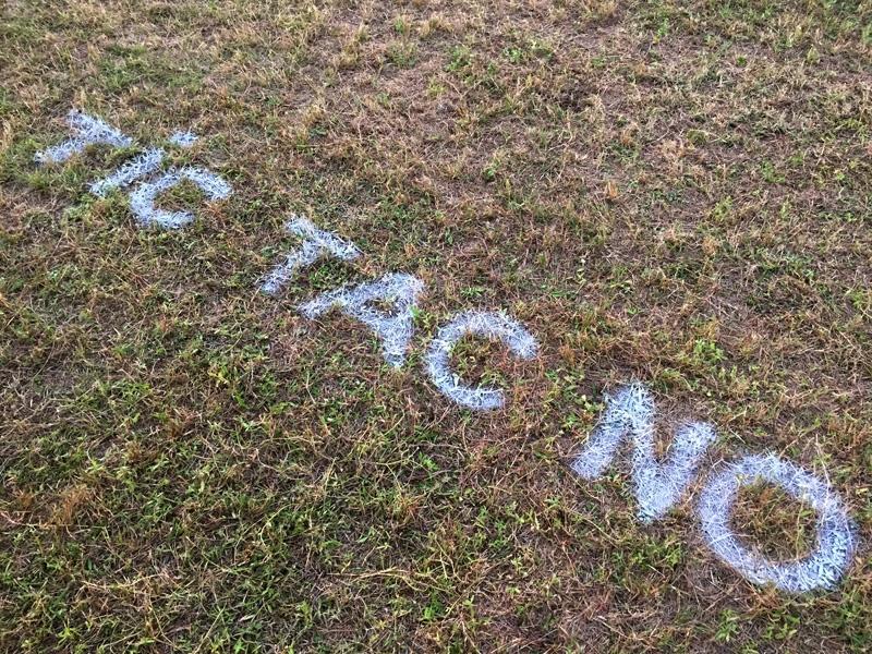 tic-tac-no-3d-leonkeer-grass